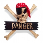 Crossbone 'Danger' Wallhanging